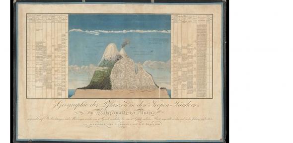 Humboldt image